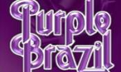 Folder do Evento: Vinil Music Pub apresenta Depp Purple