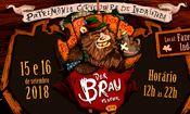 Der Brau Festival 2018