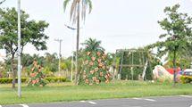 Árvores de natal começam a ser montadas em frente ao paço municipal